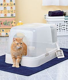 Litter Box with Reserve Tank.  Fill base with litter, fill the litter reserve tank (holds 20 lbs), remove dirty litter from base and the tank replenishes it with fresh litter.   #smart #cat #litterbox #goodidea