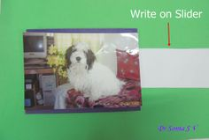 Easy Interactive Card Tutorial