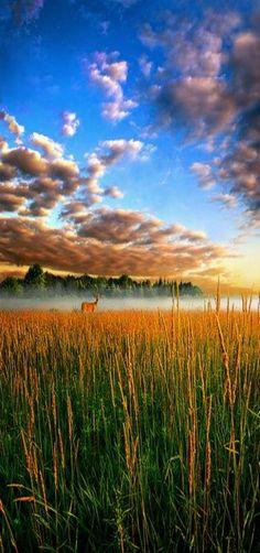 """My Way Back"" Milwaukee, Wisconsin, USA -Horizons by Phil Koch."
