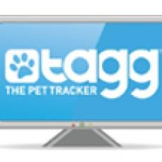 Dog Tracker!  Wish I'd had this YEARS ago!  Track on your phone or PC...