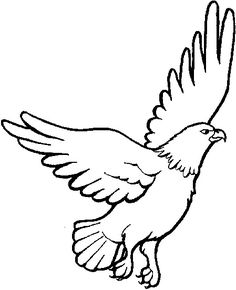 Eagle coloring pages 3