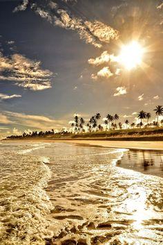 Golden Beach   La Beℓℓe ℳystère