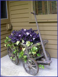 Wagon planter.....