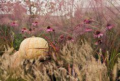 Feeling Fall on The BULLETIN at Terrain #white #pumpkin