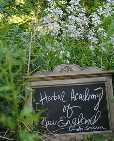 How to get an herbal apprenticeship from the comfort of your home.