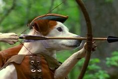 15 Classic Tales Wishbone Taught Better Than Your English Teacher