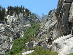 Rock climbing, anyone?