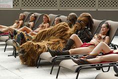 Wookiees Sunbathing with Group of SlaveLeias - News - GeekTyrant