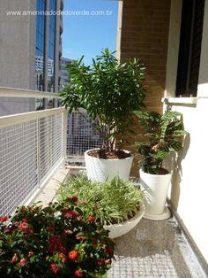 Small apartment varanda: green composition by No Figueiredo - A Menina do Dedo Verde: www.ameninadodedoverde.com.br