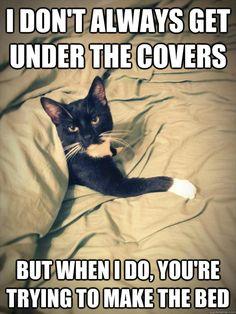 Haha so Tilly!