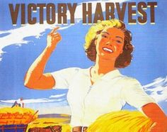 Your Harvest Time Food Guide with seasonal recipes, food preserving resources and a bit of history.