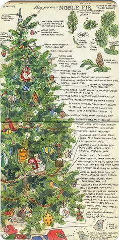 'Christmas tree' (2012) by American artist & illustrator Chandler O'Leary. via the artist's blog, drawn the road again