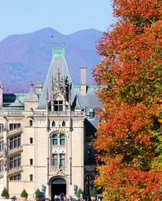 Biltmore House with fall color biltmor hous
