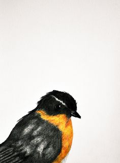 Yellow bird 4  Original colored pencil drawing by PrismaticColours, $35.00
