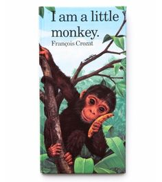 I Am A Little Monkey