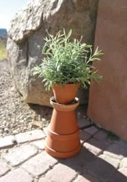 garden planters, flower bed, cotta planter