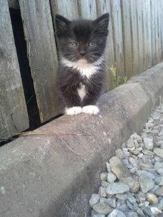 Little tough guy...
