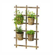 Four-Pot Trellis - D