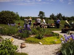 What Is A Plant Swap – Plant Swap Rules For Seed And Plant Exchanges