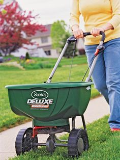 Fall is the best time to fertilize your lawn if you live in the North. Cool-season grasses, such as bluegrass, fescue, and ryegrass, respond well to feeding in early September and again in late fall (late October or November). It helps them green up earlier and look better in spring.
