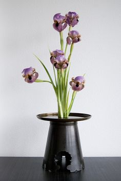 Ikebana with one material, irises by Otomodachi, via Flickr