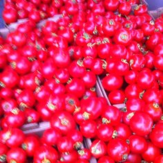 Come on Summer!  Dirty Girl Farms Early Girl tomato deliciousness. Yum.