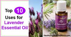 Top 10 Uses for Lavender Essential Oil