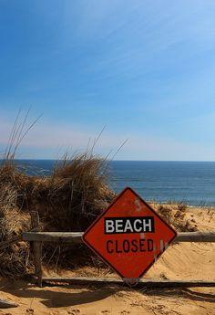 White Crest Beach, Wellfleet, MA