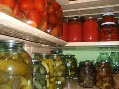 Getting Started With Your Survival Food Supply