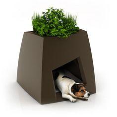 dog kennel/planter