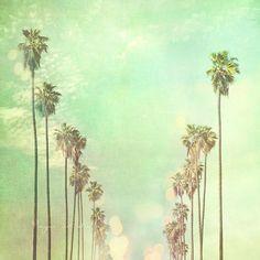 Los Angeles photography, photo of California palm trees in a row La La Land sunny day summer vacation blue mint green sky travel nursery art. $165.00, via Etsy.