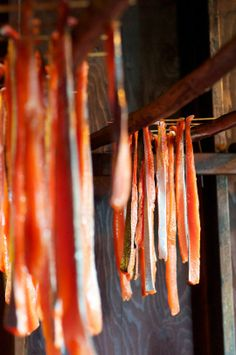 From the Ocean to the Smokehouse: Preserving Salmon in Alaska Salmon Season in Alaska