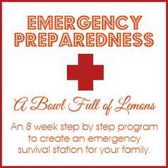 Emergency preparedness & Survival Kit - How to create storage | A Bowl Full of Lemons