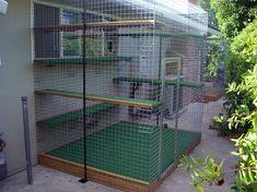 Tons of pics for Outdoor Cat Enclosures ideas #catios
