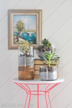 Concrete and Glass Succulent Planter vintagerevivals.com glass succul, succul planter, planter tutori