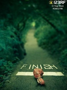 Success isn't how fast you finished,  it is that you DID finish, and you did not give up.