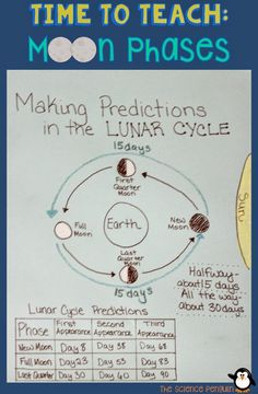 Making Predictions in the Lunar Cycle