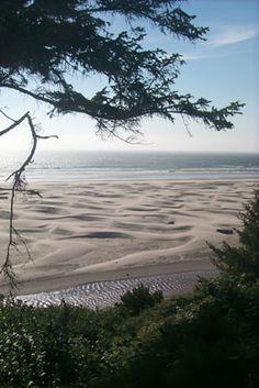 Agate Beach Dunes - Newport, Oregon