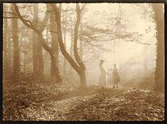 Léonard Misonne.   Light streaming in the woodlands
