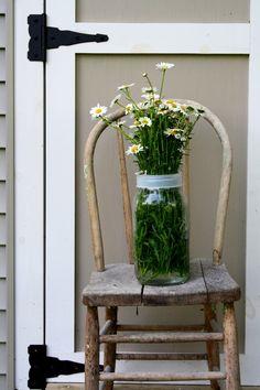 Farm house chair and daisies