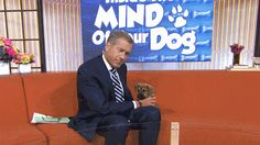 Pups, puns and germ protectors: Brian Williams anchors TODAY (as only he can)