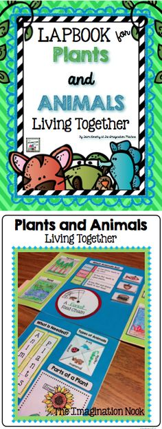 This has all you'll need to create an awesome lapbook about plant and animals, their needs, and how they live together with your students. Lapbooks are easily created by any learner. $