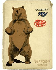 Where-is-my-KitKat Bear     #bearaddiction #bear #beary #wildlife #teddy #fur #addiction