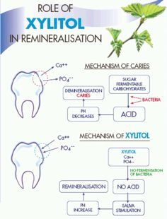 Role of Xylitol in Remineralisation. In biogeochemistry, remineralisation (UK spelling; US remineralization) refers to the transformation of organic molecules to inorganic forms, typically mediated by biological activity.