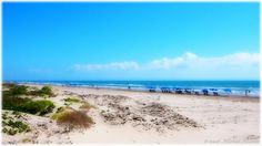 favorit place, south padre, texa, springbreak travel, southpadr collegelif