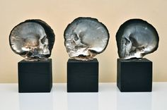 Mother of Pearl Shell Skull Carvings by Gregory Halili  http://www.thisiscolossal.com/2014/06/mother-of-pearl-shell-skull-carvings-by-gregory-halili/