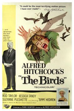 THE BIRDS MOVIE POSTER. For my ALFRED HITCHCOCK arm