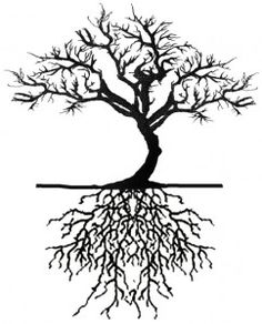 trees with roots tattoos - Bing Images