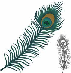peacock feathers, silhouett