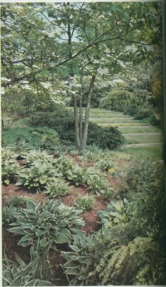 Russell Page-designed garden of Babe and William S. Paley.